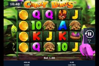 Crazy Birds Mobile Slot Machine