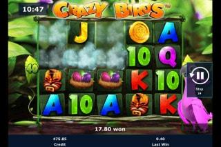 Crazy Birds Mobile Slot Win
