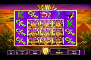 IGT Sphinx Wild Slot Win