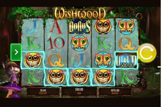 IGT Wishwood Slot Win
