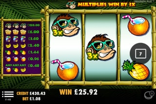 Monkey Madness Slot Multipliers
