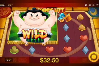 Sumo Spins Mobile Slot Free Spins With Mega Wilds