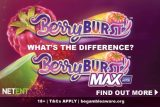 What's The Difference Between the NetEnt Berryburst Slots