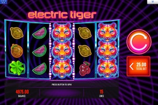 Electric Tiger Slot Wild Reels