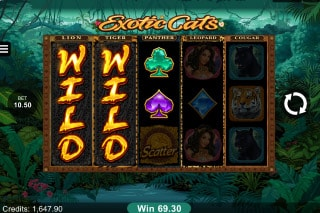 Exotic Cats Mobile Slot Wilds