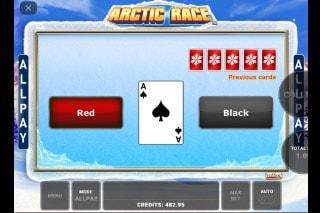 Arctic Race Slot Gamble Feature