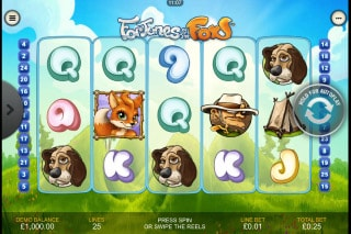 Fortunes of the Fox Mobile Slot Game