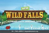 New Play'n GO Wilds Falls Mobile Slot Out In Jan