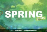 A Collection of the Best Spring Slots
