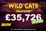 Wild Cats Multiline Slot Big Win UK