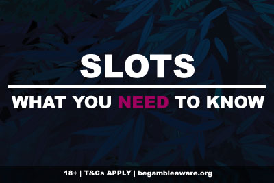 Slots What You Need To Know Before Playing
