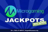 Microgaming Jackpot Slots Big Wins