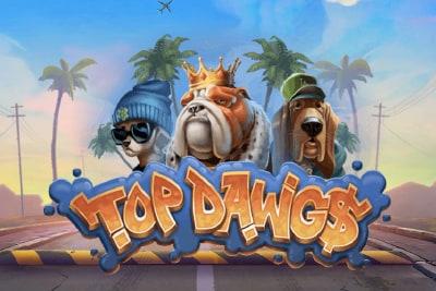 Top Dawg$ Slot Logo